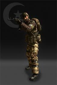 feng20121221 - 中东联盟军